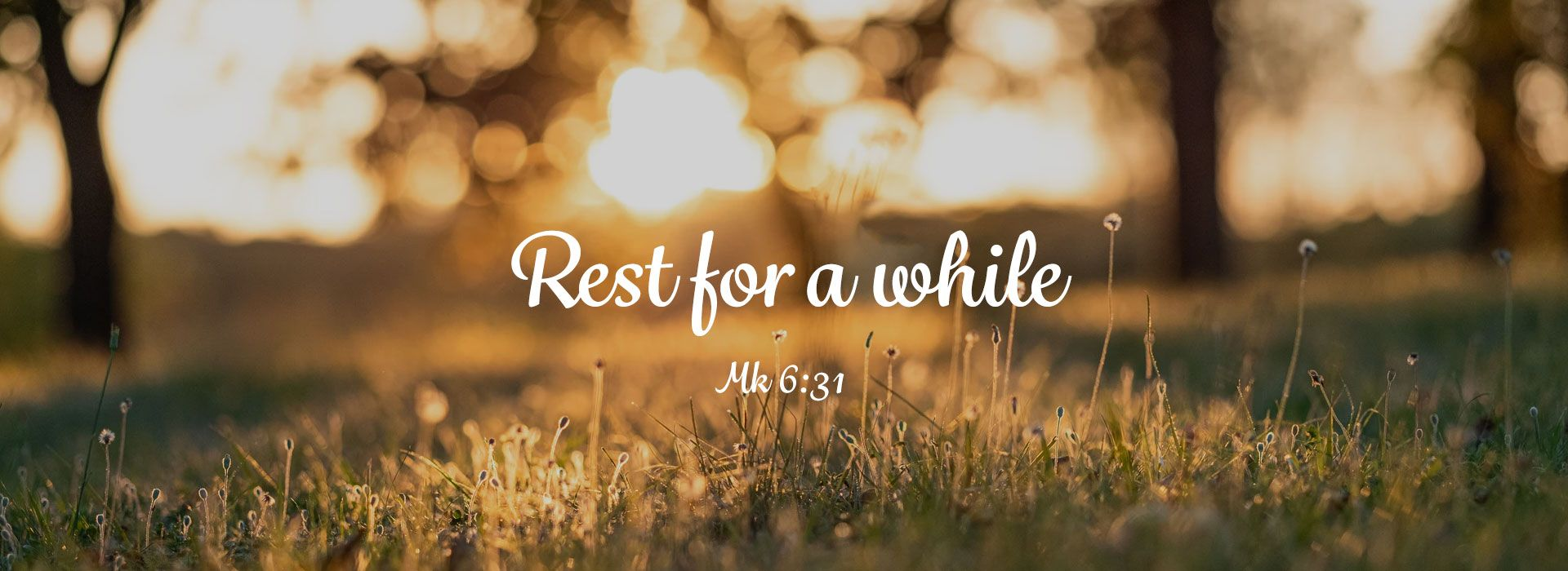 Rest for a while
